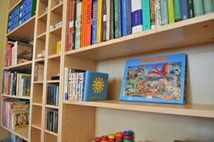 Viele und vielfältige Bücher im Regal